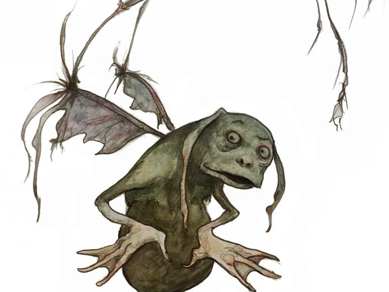 good or bad faery brian froud